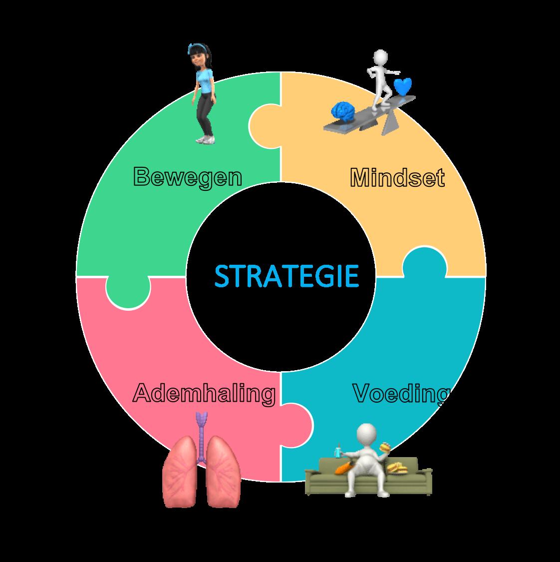 Gezondheidstrategie